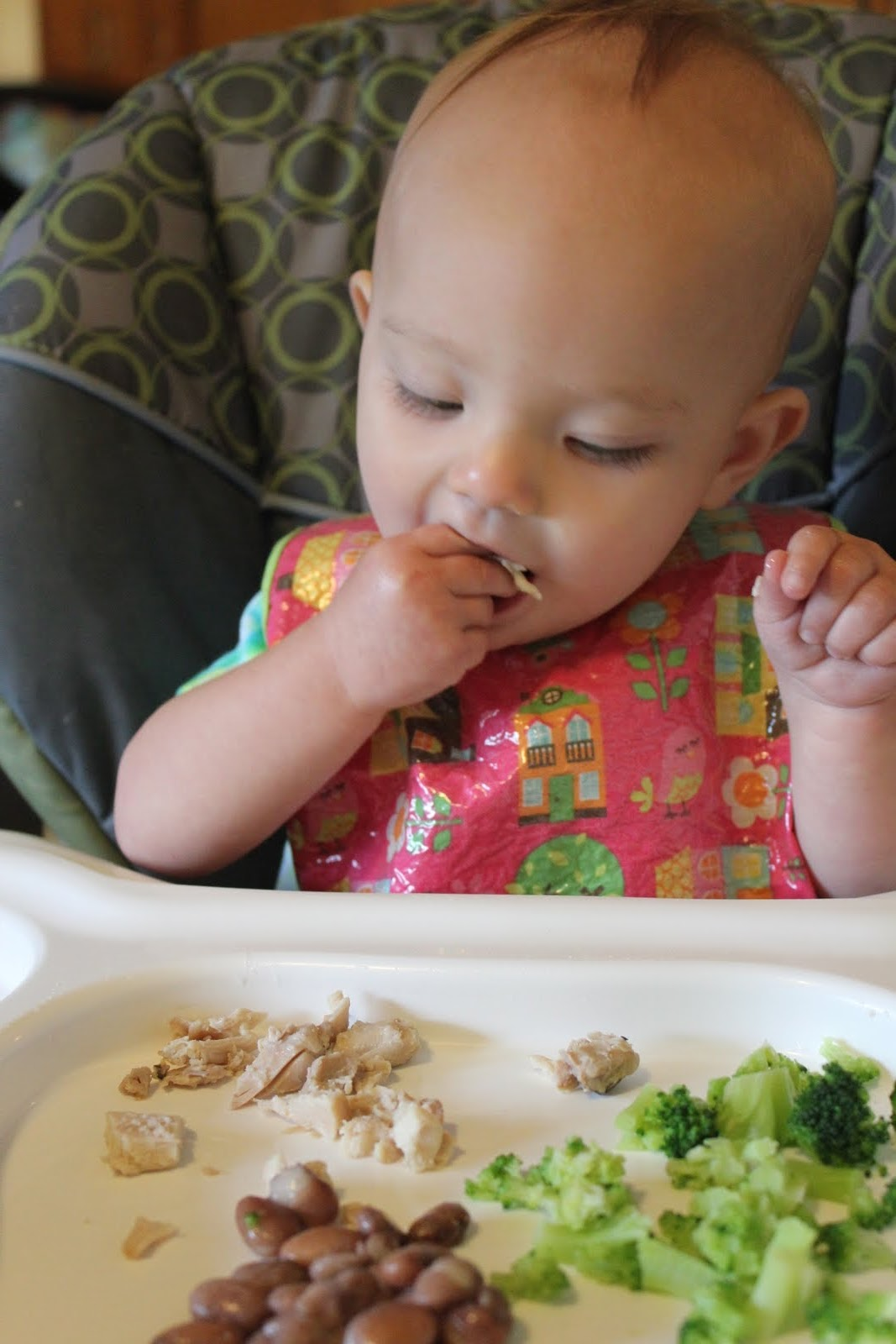 When Can I Start Baby On Finger Foods