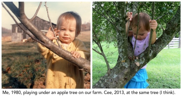 apple tree kids